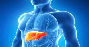Симптомы и лечение вирусного гепатита С